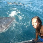 Aimee with a whale shark, Ningaloo, Australia